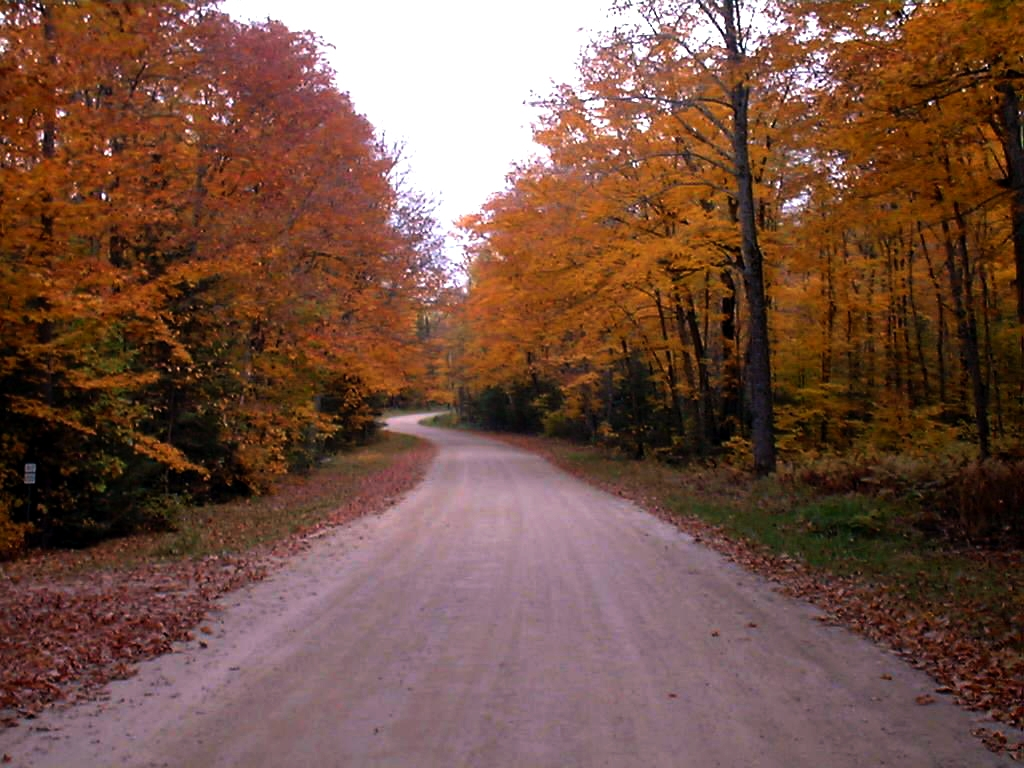 Gravel Roads are great for hiking, biking and atv riding.